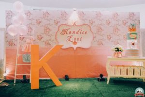 Kandice Lovi's Shabby Chic Party – 1st birthday