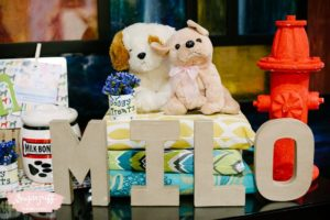 "Milo's ""Best in Show"" Puppy Themed Party – 1st Birthday"