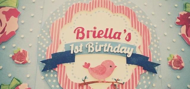 Briella's Shabby Chic Themed Party – 1st Birthday