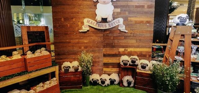 Mac's Little Lamb Themed Party – Baptismal Party