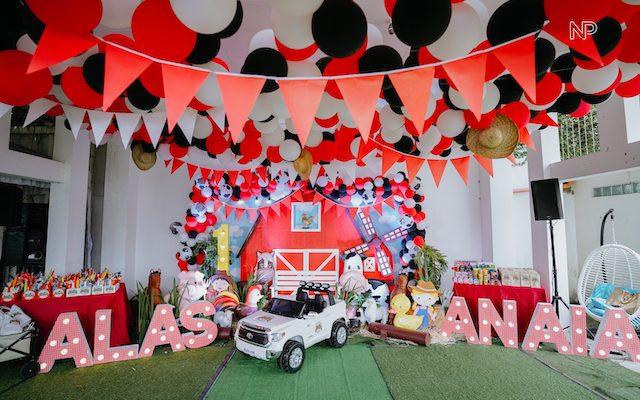 Alas and Anaia's Barnyard Themed Party – 1st Birthday